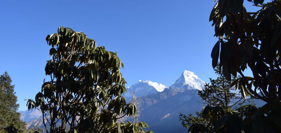 Nagarkot Kakani tour - Nepal